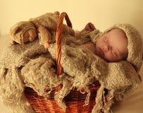 Nyfött behandla som ett barn flickan som sover under den hemtrevliga filten i korg Royaltyfri Bild