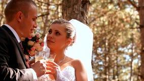 Nygifta personer firar deras bröllop lager videofilmer