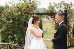 Nygifta personer går i parkera på bröllopdagen Bruden och brudgummen Enjoying på bröllopdagen arkivbilder