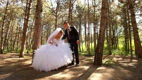 Nygifta personer går i skogen stock video