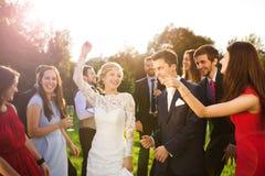 Nygifta personer med gästen på deras trädgårds- parti arkivbild