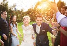 Nygifta personer med gästen på deras trädgårds- parti arkivfoto