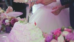 Nygifta personer på bröllopet klipper en festlig stor kaka lager videofilmer