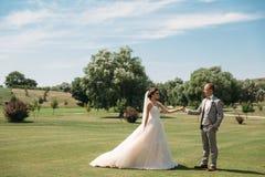 Nygifta personer promenerar det gröna fältet av golfklubben på en bröllopdag Brudgummen i en affärsdräkt är grå och fotografering för bildbyråer