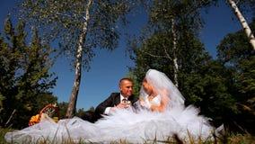 Nygifta personer som kysser på en picknick stock video