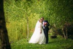 Nygifta personerna går i parkera på bröllopdagen Bruden och brudgummen Enjoying på bröllopdagen arkivbild