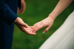 Nygifta personerna går i parkera på bröllopdagen Bruden och brudgummen Enjoying på bröllopdagen soligt väder royaltyfri fotografi
