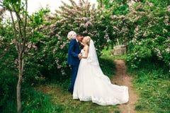 Nygifta personerna går i parkera på bröllopdagen Bruden och brudgummen Enjoying på bröllopdagen soligt väder Arkivbilder