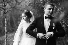 Nygifta personerna går i parkera på bröllopdagen Bruden och brudgummen Enjoying på bröllopdagen soligt väder royaltyfria bilder