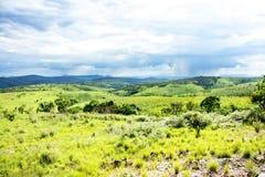 Nyika platå i Malawi Arkivbild