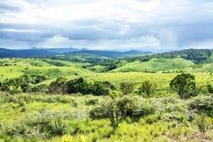Nyika platå i Malawi Arkivbilder