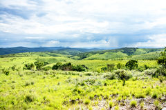 Nyika Plateau in Malawi Stock Photography