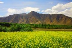 Nyingchi vers Lhasa Images libres de droits