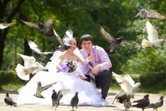 Nyligen-att gifta sig par Royaltyfria Foton