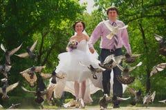Nyligen-att gifta sig par Royaltyfri Fotografi
