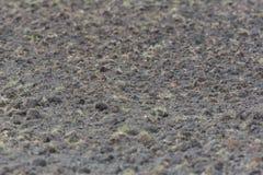 Nyligen fårad fertil jordbruksmark Royaltyfri Fotografi