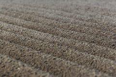 Nyligen fårad jordbruksmark med symmetriska fåror Royaltyfria Foton