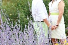 Nyligen förlovade parinnehavhänder inom purpurfärgade blommor Royaltyfria Foton
