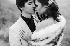 Nyligen gift par som poserar i bergen royaltyfri bild