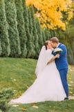 Nyligen parkerar gifta paret som strosar i grönt soligt, med cypressträd Fotografering för Bildbyråer