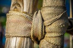 Nylonband geknotet auf einem Baum Stockfotos