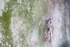 Nylonowa arkana Zdjęcie Royalty Free
