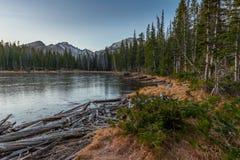 Nymph Lake Arkivfoto