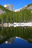Nymph Lake Reflection. The Rocky Mountains reflected in the crystal clear waters of Nymph Lake in Rocky Mountain National Park, Colorado Royalty Free Stock Image