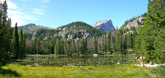 Nymph Lake, Rocky Mountain National Park royalty free stock image