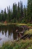 Nymph Lake Stock Photo