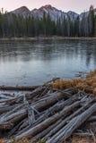 Nymph Lake Royalty Free Stock Image
