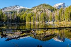 Nymph Lake, Rocky Mountains, Colorado, USA. Stock Photography
