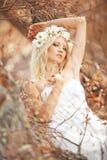 Nymphe d'automne photographie stock libre de droits