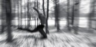 Nymphe en bois Images stock