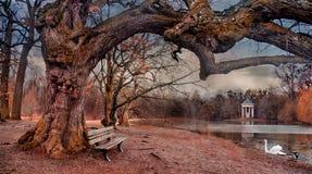 童话树在Nymphenburg 免版税库存图片