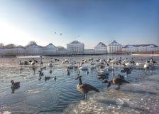 Nymphenburg Castle Μόναχο το χειμώνα με την παγωμένη λίμνη Στοκ Εικόνες