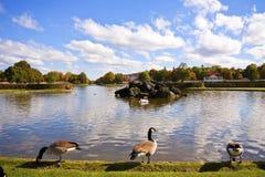 Nymphenburg Castle near Munich: ornamental pond Stock Photography