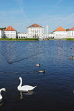 Nymphenburg Palace in Munich. Nymphenburg Castle with lake and swan in front, located in Munich, Germany Stock Photos