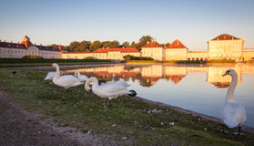 Nymphenburg Palace in Munich. Nymphenburg palace with reflection in the morning sunlight Royalty Free Stock Photos