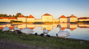 Nymphenburg Palace. With reflection in the morning sunlight Royalty Free Stock Photos
