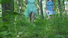 Nymphs are Walking Through the Woods stock video footage
