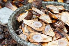 Nypa棕榈果子在泰国 免版税库存图片