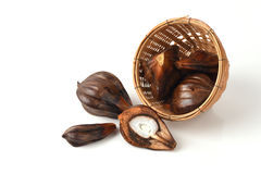Nypa, Atap palm, Nipa palm, Mangrove palm,fruits. Stock Images