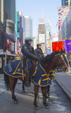 NYPD准备好在马背上的警察保护在时代广场的公众在超级杯XLVIII星期期间在曼哈顿 免版税库存图片