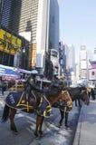 NYPD准备好在马背上的警察保护在百老汇的公众在超级杯XLVIII星期期间在曼哈顿 免版税库存图片