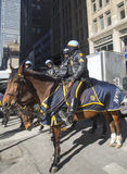 NYPD准备好在马背上的警察保护在百老汇的公众在超级杯XLVIII星期期间在曼哈顿 免版税库存照片
