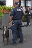 NYPD biura K-9 przelotowi funkcjonariuszi policji K-9 Sam providing ochronę przy Krajowym tenisa centrum podczas us open i Belgij Obrazy Stock