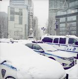 NYPD cars and van covered in snow. Stock Image