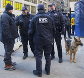 NYPD counter terrorism officers and NYPD transit bureau K-9 police officer with K-9 dog providing security on Broadway royalty free stock photos