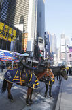 NYPD funkcjonariuszi policji na horseback przygotowywającym ochraniać społeczeństwa na Broadway podczas super bowl XLVIII tygodnia Obraz Royalty Free